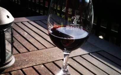 vino La Rioja Wine España