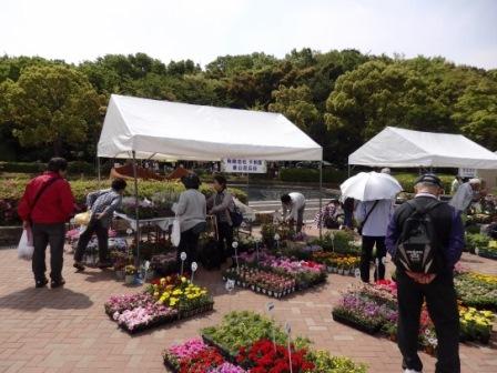 ―神戸市最大の花みどりイベント― 花のフェスタこうべ2018