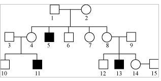 Pedigree chart meritnation