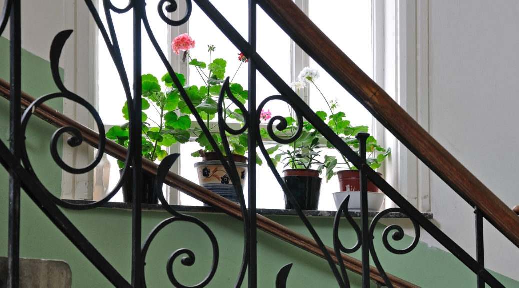 Staircase Railing Styles That Will Elevate Your Design Merit   Wrought Iron Staircase Designs   Circular Staircase   Stair Grill Design   Railing Grand Staircase   Photo Flower Flower   Stairway