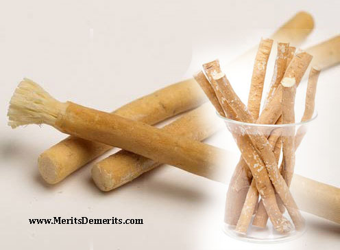 Benefits of Using Miswak
