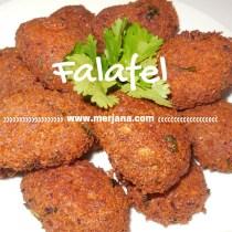 Yummy Falafels