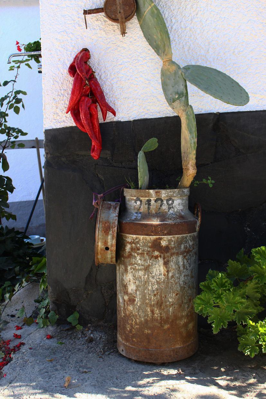mermelada-artesanal-de-granada-alpujarra-la-cruz-del-viso27