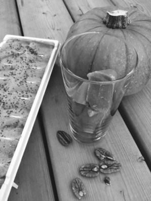 pumpkin-smoothie.jpg
