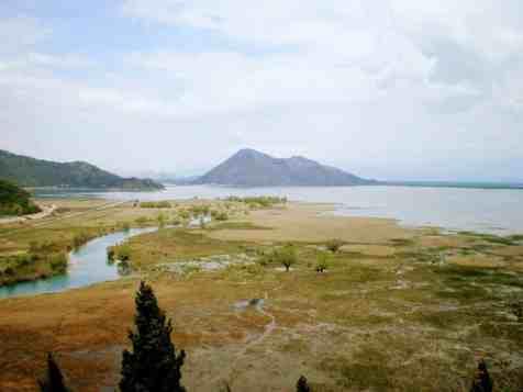 skadar lake bog montenegro view