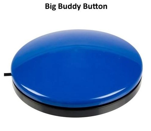 Big Buddy Button