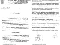 Municipalitatea a avizat TREI SERI DE PROTESTE în care sibienii vor cere DEMISIA autorităților implicate în execuția ursului