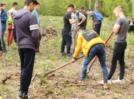 """Campania """"Protejăm mediul, trăim sănătos"""" continuă la Sibiu"""