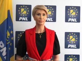 PNL Sibiu și-a propus să strângă peste 35.000 de semnături pentru susținerea candidaturii lui Klaus Iohannis