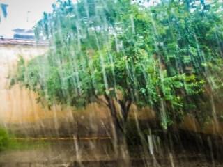 Vremea se va răci în Transilvania. Prognoza meteo de Florii