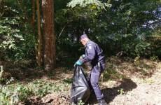 Sute de kilograme de gunoaie, adunate de jandarmi, silvicultori și pompieri din pădurea Dumbrava