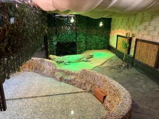 Un crocodil și o vidră, noile atracții ale Grădinii Zoologice din Sibiu