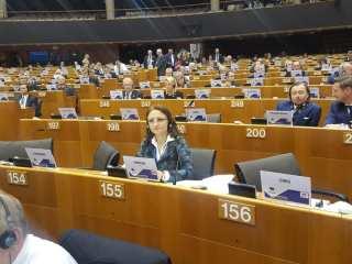 Daniela Cîmpean, în Comitetul European al Regiunilor