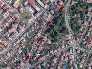Modificări în regimul de circulație pe străzile Litovoi, Viitorului și Moara de Scoarță
