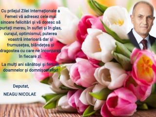 Mesajul de 8 Martie al deputatului Nicolae Neagu