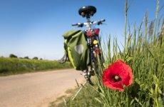 Copil izbit de un biciclist, în Vard
