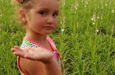 Tărâmul tuberozelor merită descoperit! Prima localitate din România unde s-au cultivat tuberozele – o comoară ascunsă a județului Sibiu