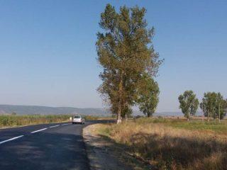 Licitație pentru pista de biciclete de pe DJ 105G, între localitățile Avrig și Mârșa