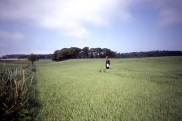 Farming landscape.
