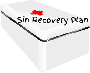 sin recovery plan