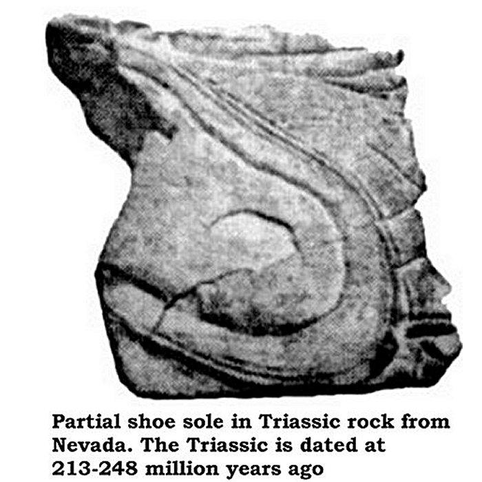 Partial shoe sole - Triasic rock Nevada