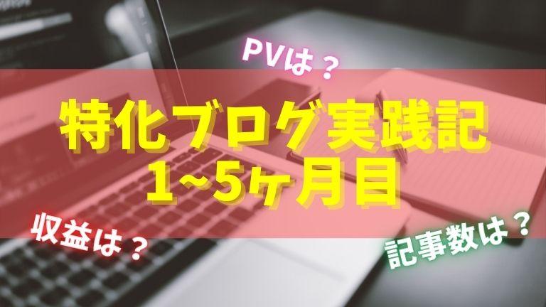 特化ブログ実践記1ヶ月目~5ヶ月目のPV/収益/記事数まとめ!