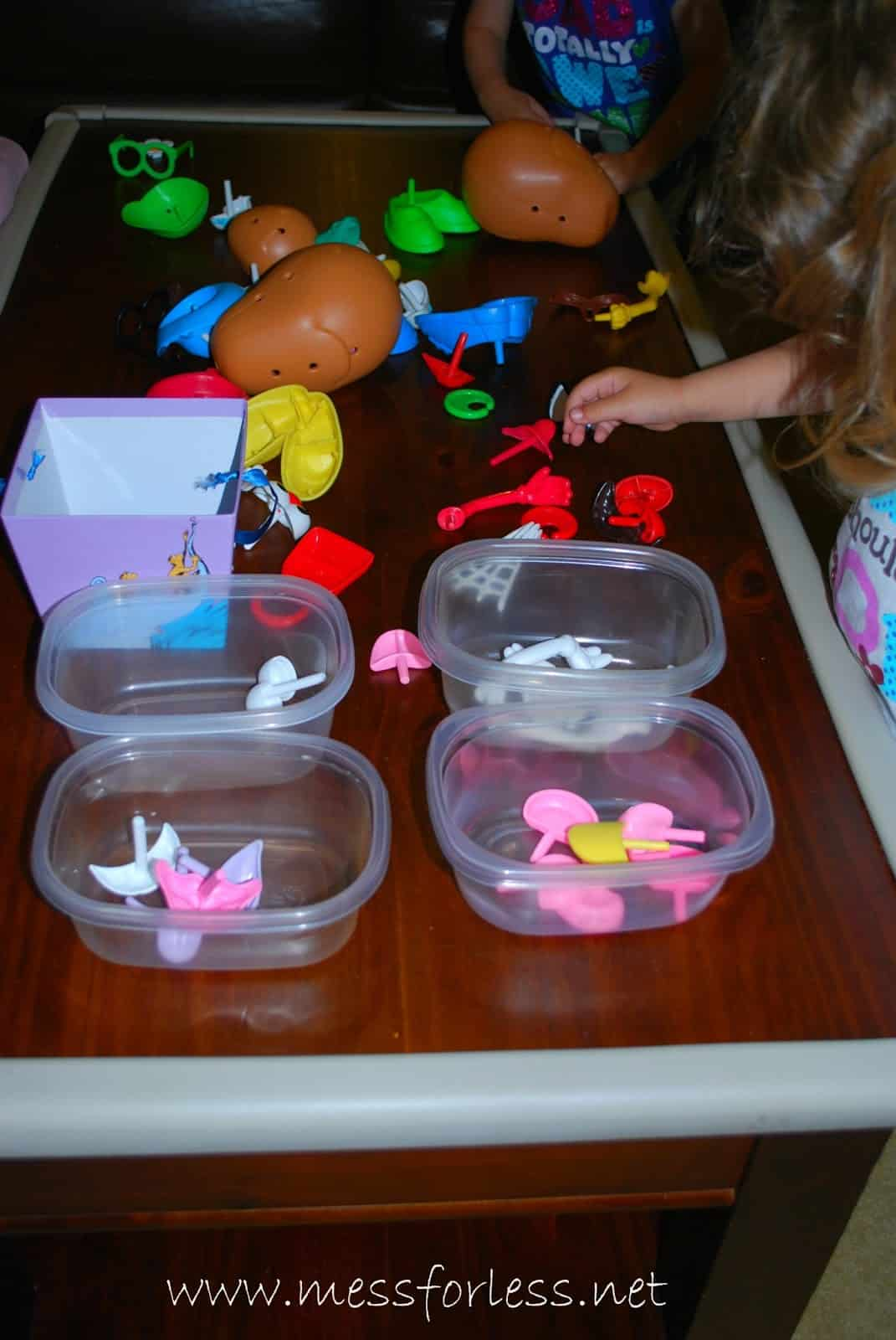 Toy Sorting Activity