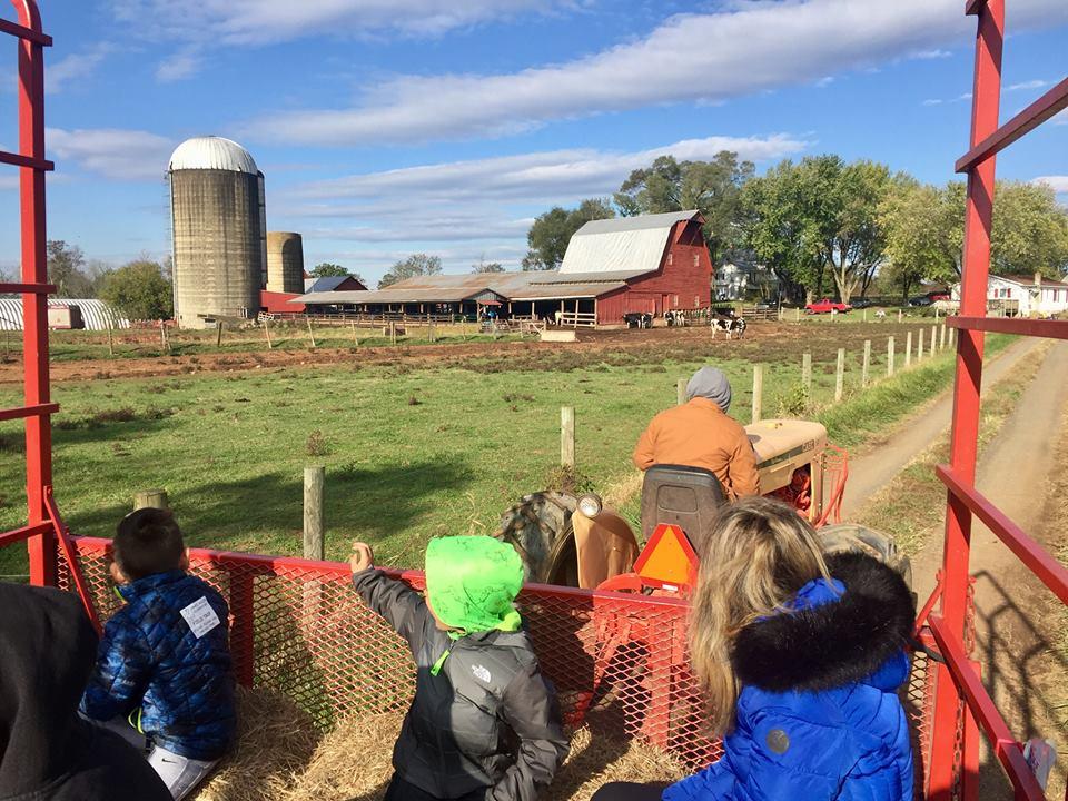 on the hayride at messicks farm market fall festival