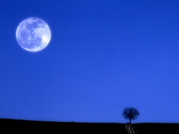 """Crescenti consensi per il """"Trail della Luna Piena"""""""