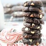 Santa Claus's Favorite Cookies