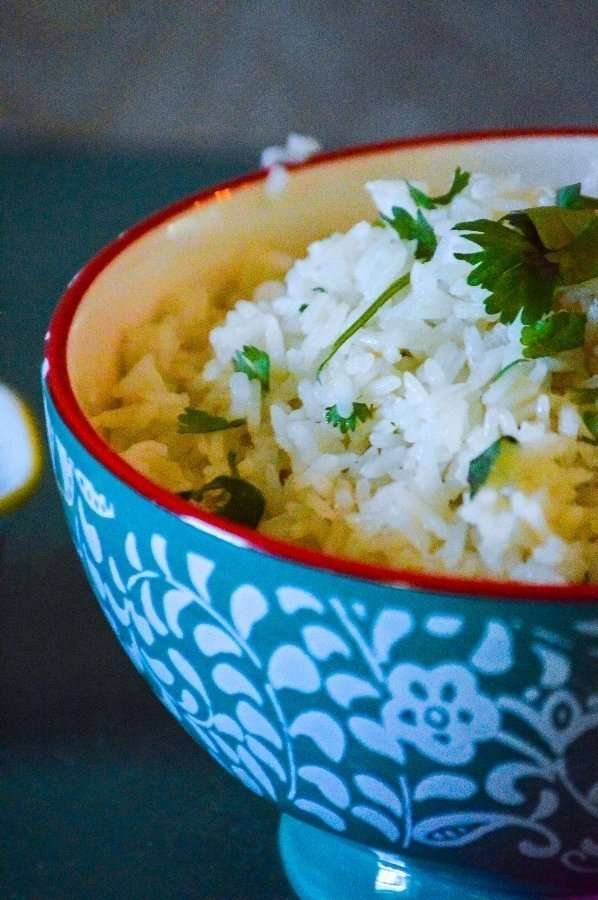 Close up of Coconut Rice