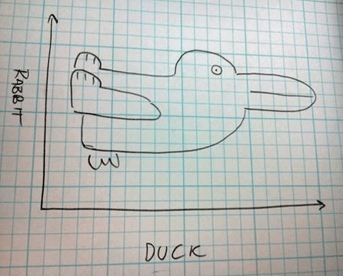 rabbit_duck
