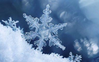 Chaleur de l'hiver