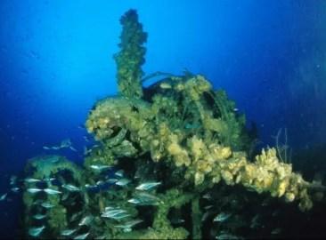 Tartiflette Team plongée sous marine