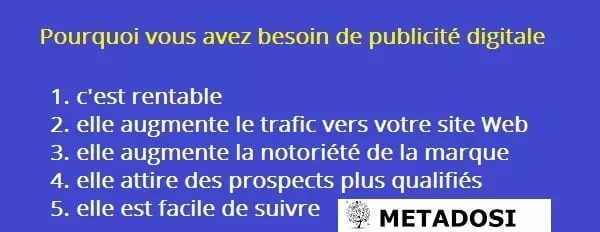 Services de publicité digitale