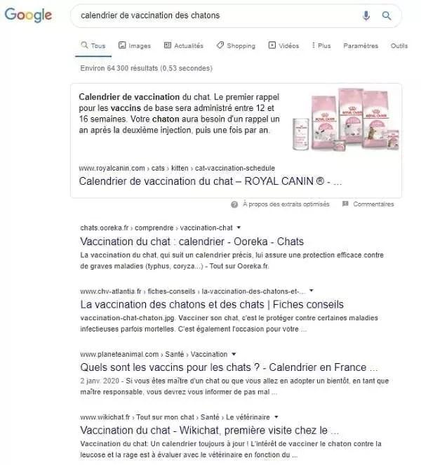 Exemple de défaillance d'un site web dans les SERP
