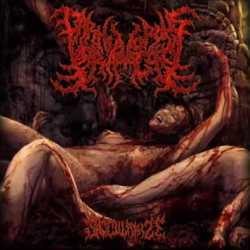 Carnivorous Voracity nueva canción «Secularize»