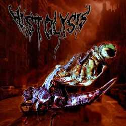 Histolysis nos presentan la portada de su demo