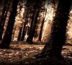 Nakkiga videoclip de «Jainkoek Gidatua»