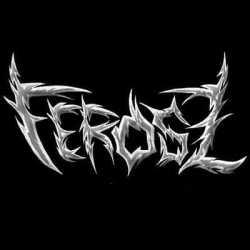 Ferosz buscan guitarrista