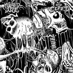 Split de Mutilated Judge y The Crypt