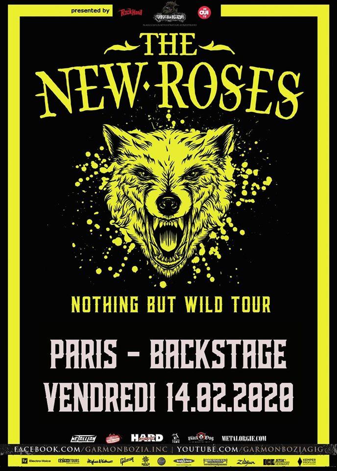 Concert de The New Roses, Guests au backstage à paris
