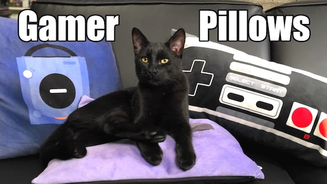 Gamer Pillows – Perfect for Game Rooms, Gifts & Kittens