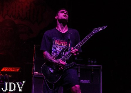 Cane Hill 15