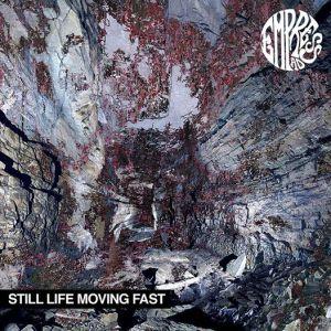 Empress AD, Still Life Moving Fast