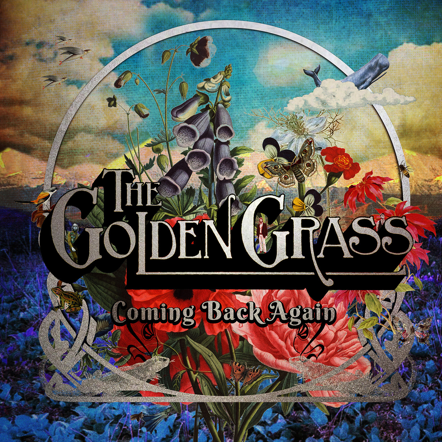 You are currently viewing THE GOLDEN GRASS <br/> Coming Back Again