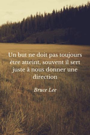 Un but ne doit pas toujours être atteint, souvent il sert juste à nous donner une direction- Bruce Lee