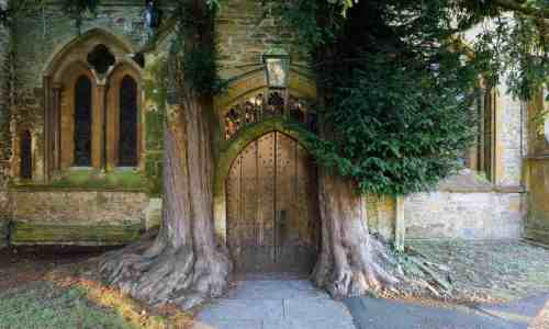 Yew trees and door of St Edward's church, Stow-on the-Wold, Gloucestershire. Photograph: Stuart Black/Alamy