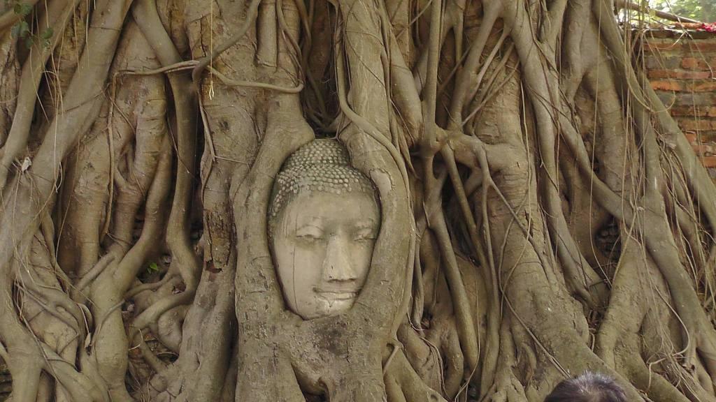 מקדש ואט מהטט איוטיאה 2015