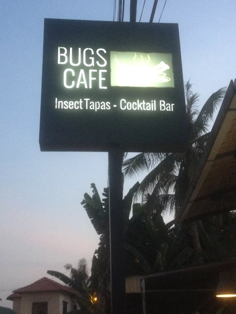 Insects Bar